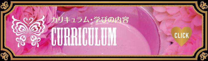 CURRICULUM-カリキュラム_Vivienne Waxing【大阪・南堀江】ブラジリアンワックス・ワックス脱毛・サロン&スクール|ディプロマ・講習|スターピルワックス販売代理店・インストラクター在籍|ヴィヴィアン